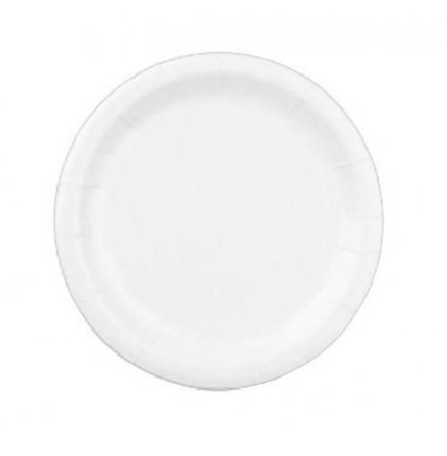 10' FOAM PLATE
