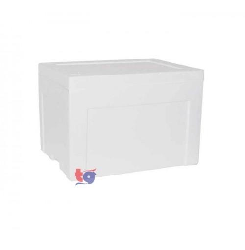 FOAM ICE BOX